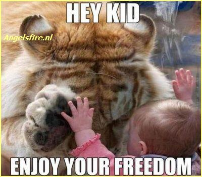 enjoy your freedom
